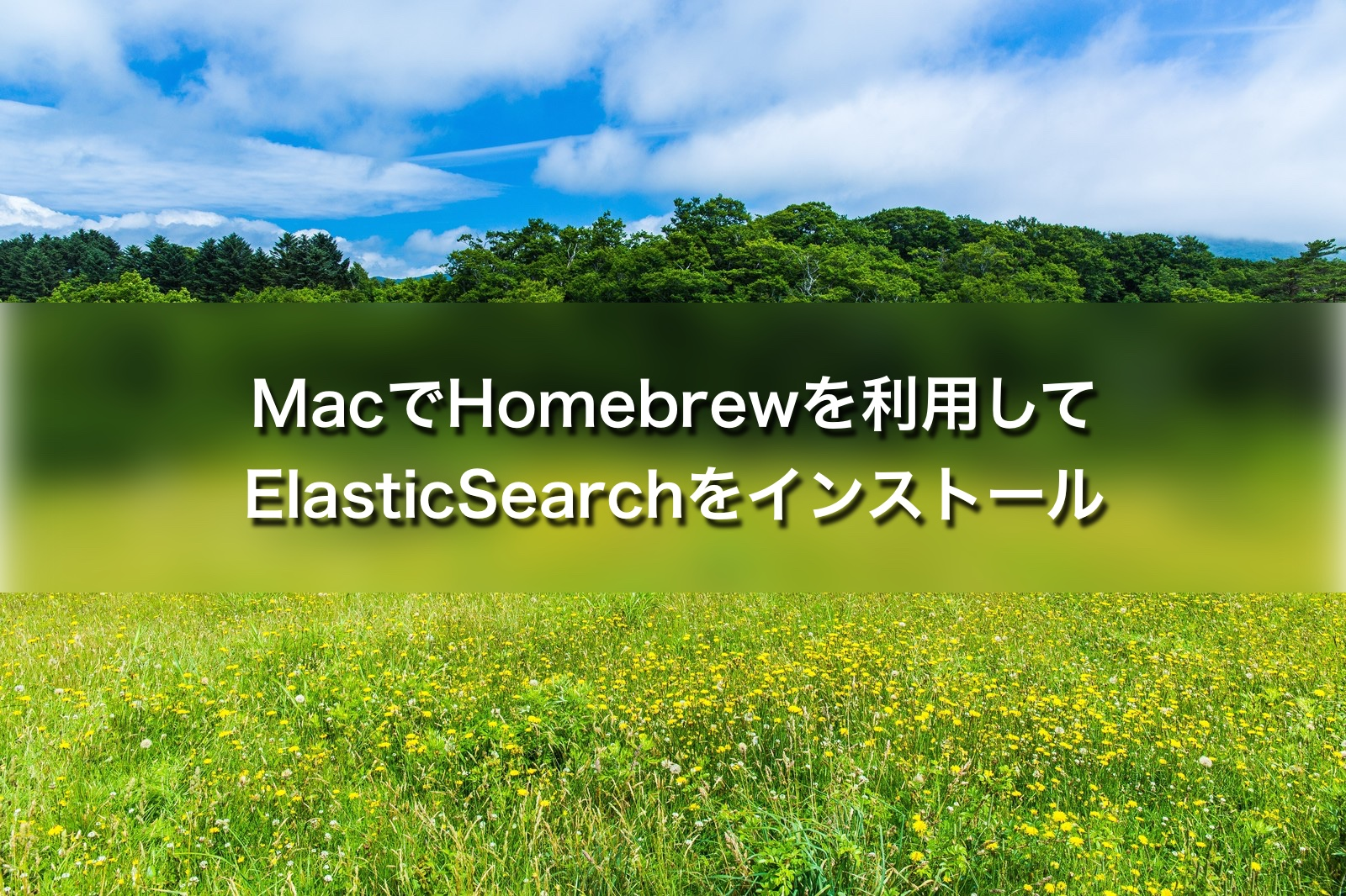 MacでHomebrewを利用してElasticSearchをインストール